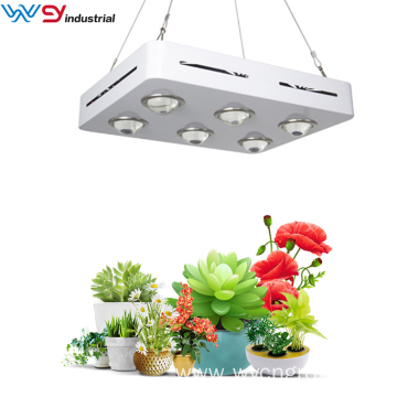 Grow light 1500w led