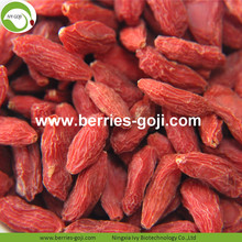 Lose Weight Fruit Nutrition Natural Tibetan Goji Berry