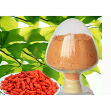 Ningxia High Quality Lower cholesterol Goji Polysaccharides