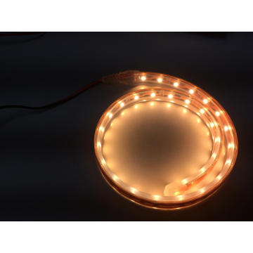 DC24V Waterproof IP68 Flexible LED Strip 3582SMD