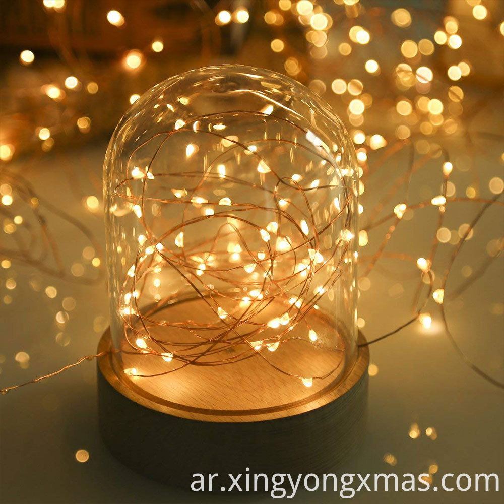 string light cr2032