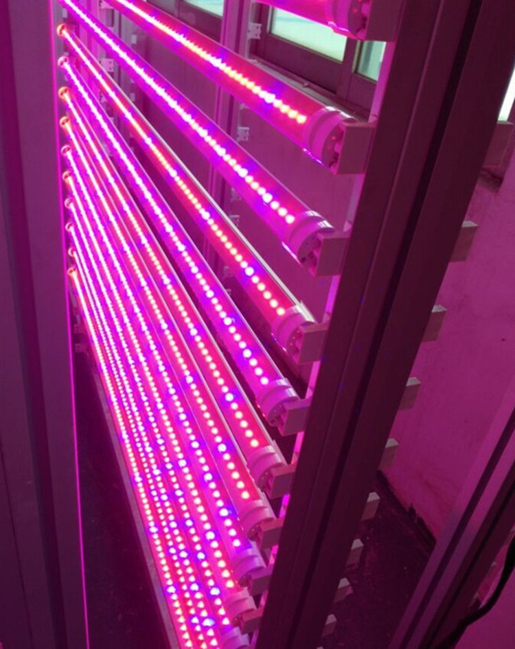 grow strip led