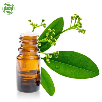 Wholesale Bulk Ravensara Essential Oil For Aromatherapy