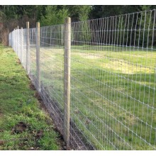 hot dip galvanized farm fence filed fence