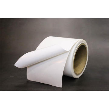 54  Synthetic Paper removable with White glassine
