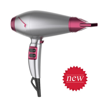 Low Radiation Salon Equipment Cordless Hair Dryer