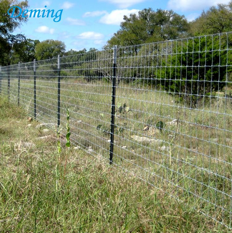 Green Painted Farm Fencing T Post Wholesale