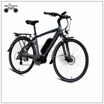 36V 250W/350W MOUNTAIN STYLE CUSTOMIZED ELECTRIC BIKE