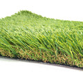 Easy installation and maintenance grass