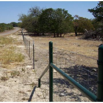 2.2m Farm filed fence animal fence with ISO9001