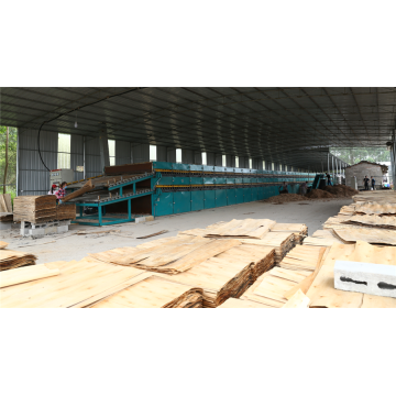 Good Veneer Drying Machine Thin Thick Veneer