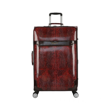 Beautiful Animal Skin luggage