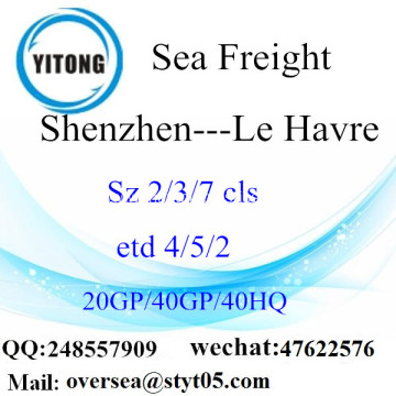 Shenzhen Port Sea Freight Shipping To Le Havre