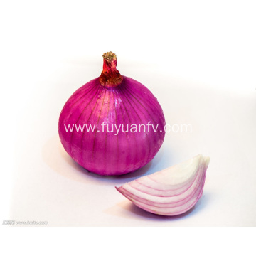 Export Standard Quality of Fresh Red Onion