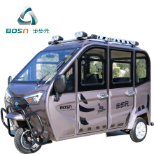 Family Use Fully Enclosed Electric Tricycles For Passenger