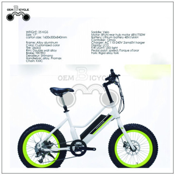Fat tire cheap electric bike for children