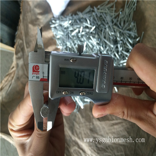 Steel concrete nail with top quality