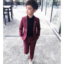 Formal Kids Party Wear 2Pc Boys Formal Suit for Wedding 2020 Toddler Boy Blazer Suit dress Student School Ceremony Costumes