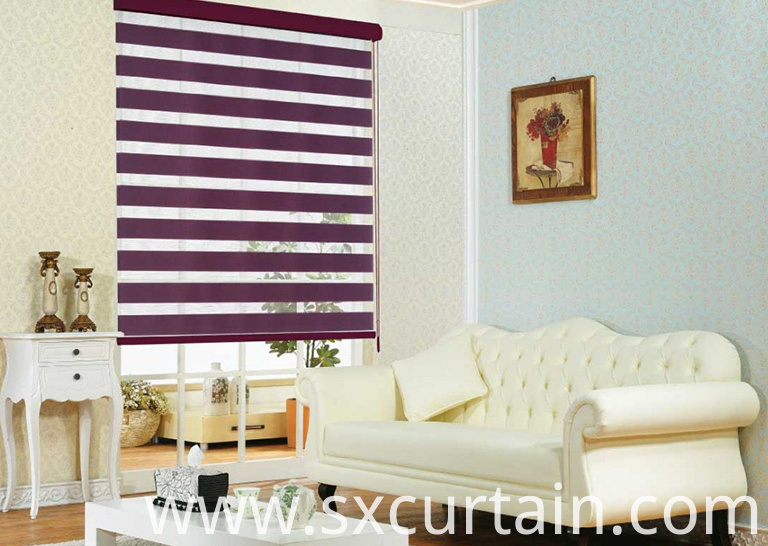 Zebra Roller Blind Curtain Shade