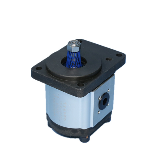 group 1 gear pump