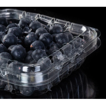 Plastic blueberry box for fruit supermarket