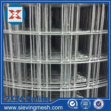 Galvanized before Welded Wire Mesh