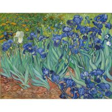 Van Gogh Painting By Numbers Flower DIY Craft Kits Handmade On Canvas With Frame Acrylic Paint For Adults Coloring By Numbers
