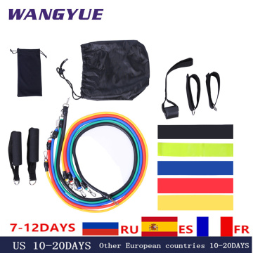 17Pcs/Set Latex Resistance Bands Gym Door Anchor Ankle Straps Resist band Kit Yoga Exercise Band Fitness Rubber Loop Tube Pull