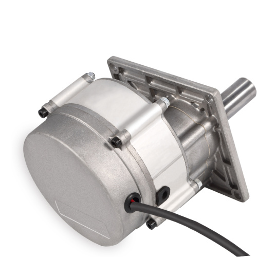 Customize brushless barrier gate DC motor 48V 1000w