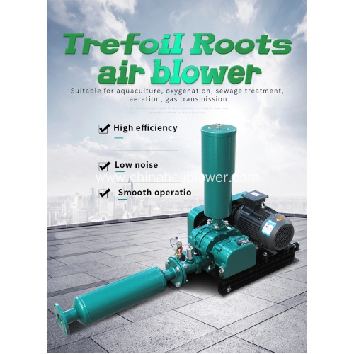 Professional Roots Blower Factory