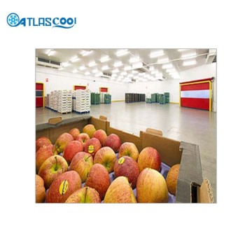 apple freezer cold storage room