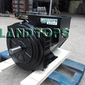 40KVA Copy Stamford Brushless Generator Alternator Price