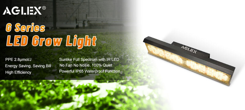110w led grow light