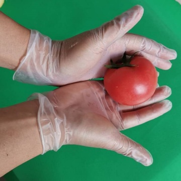Hand Gloves Vinyl Disposable Non Sterile Powder Free