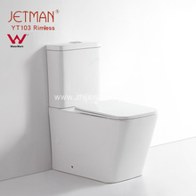 WaterMark  Rimless  Dual Flushing Toilet