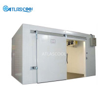 Large low temperature insulated cold storage room