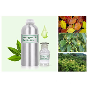 Natural Eucalyptus globulus oil