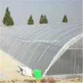 0.2mm Thickness 6m×100m Greenhouse Film