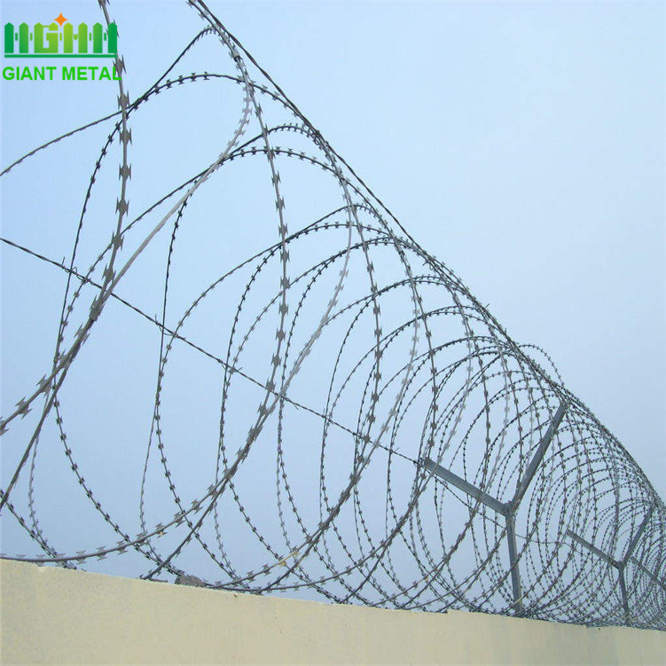 Cheap Hot Dippped Galvanized Razor Barbed Wire