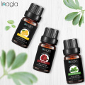 Inagla Vanilla Essential Oil Camphor Natural 10ML Pure Essential Oils Aromatherapy Diffusers Oil Healthy immune Air Fresh Care