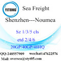 Shenzhen Port Sea Freight Shipping To Noumea