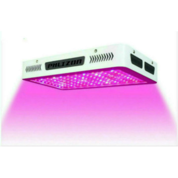 High Yield LED Grow Lights for Indoor Plants