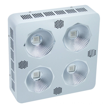 Hüdropoonilised siseruumid 300W COB LED Grow Lighting