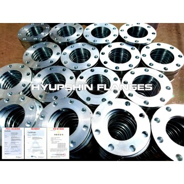 Hot Dipped Galvanizing Backing Ring Flanges