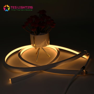 outdoor ip68 waterproof led strip lighting neon