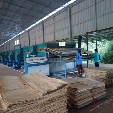 Pengeringan Veneer Drying Solution-Roller Terbaik