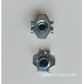 The claw Zinc Plating Furniture Nuts