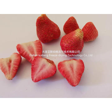 Strawberry Fruit Freeze-drying Machine