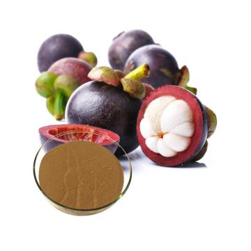 garcinia mangostana fruit extract powder