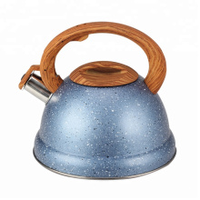 3L Tea Kettle Stainless Steel With Plastic Handle